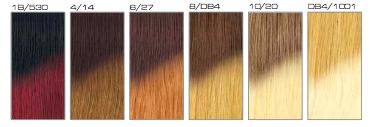 shatush-ombre-Color Chart